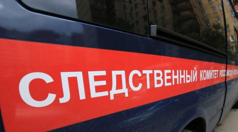 Под Кировском найден череп седой женщины с серебряным зубом